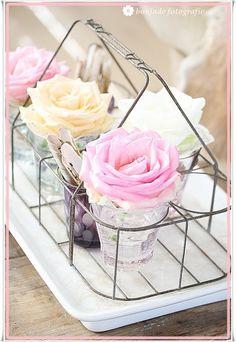 roses by lllllol