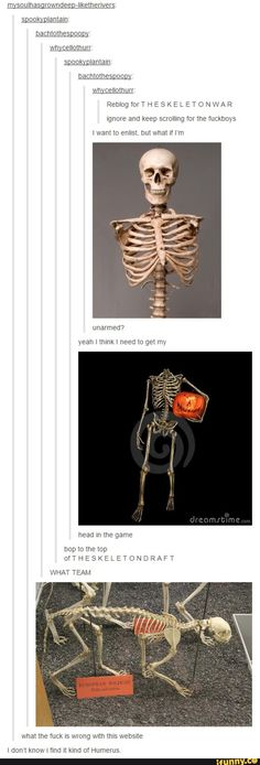 The Skeleton War <<< it certainly tickled my funny bone Tumblr Stuff, Funny Tumblr Posts, The Funny, Funny Cute, Hilarious, Dc Memes, Funny Memes, Gabe The Dog, Fangirl