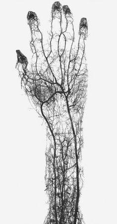 """Relevância: 2 / Tags: corpo humano, sangue, veias, direção, ciclo / Descrição: """"blueprint"""" do braço de um ser humano, mostrando as veias internas por onde o sangue circula. Um paralelo onde as veias são as ruas e os caminhos de uma grande cidade e os glóbulos vermelhos do sangue são as pessoas."""
