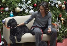 First Lady Michelle Obama with Sunny and Bo, spread some holiday cheer at the Children's National Medical Center.