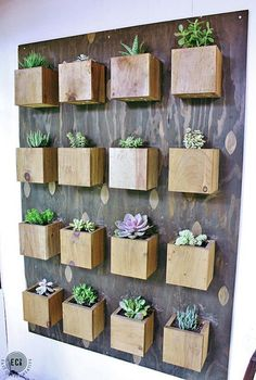 Indoor Cool Cactus & Succulent Projects, this would be so easy to make with just a piece of AB Marine and some lumber scraps