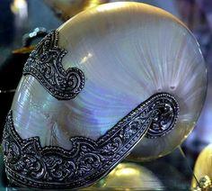 Decorated Nautilus
