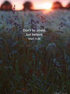 fear quotes, christian quotes, bible quotes, bible verse
