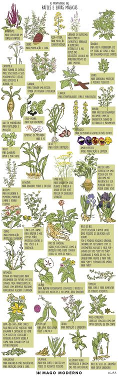 Diabetes Food List - - - Diabetes Education Tips - - Diabetes Desserts Fall Wiccan, Magick, Witchcraft, Zen Mode, Herbal Magic, Baby Witch, Plantar, Medicinal Herbs, Book Of Shadows