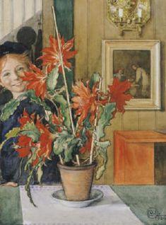 Brita's Cactus