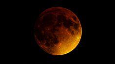 Stunning photos from last night's rare super blood moon