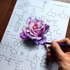 WANT A FEATURE ? CLICK LINK IN MY PROFILE !!! Tag #LADYTEREZIE Repost from @elia_pelle - distraction - Hyper realistic rose drawing drawn on a background made with organic chemistry notes. Hope you like it via http://instagram.com/ladyterezie