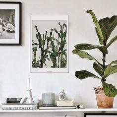 GAAYA arte e decoração: A graça é assumir a beleza da simplicidade