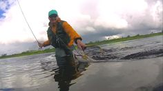 THE moment!  Grayling dry fly fishing in Swedish Lapland.