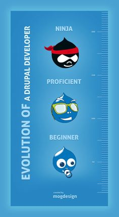 Evolution of a Drupal Developer #drupal