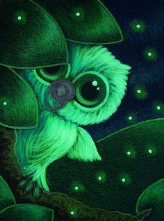 TINY BABY OWL WITH FIREFLIES...WHERE IS MOM