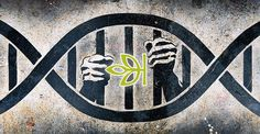 Ancestry.com Caught Sharing Customer DNA Data With Police With No Warrant.. I am divided on this topic...
