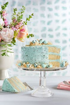 Speckled Malted Coconut Cake. Love this for a baby bird/ robin + nest-themed baby shower.