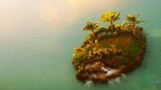 Одинокий зеленый островок