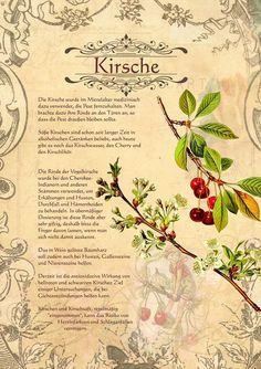http://www.kraeuter-verzeichnis.de/kraeuter/Kirsche.shtml