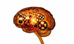 La memoria: claves para potenciarla