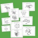 Fichas de infantil: Dibujos de bichos para colorear