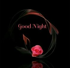 good night H. hooe you have a good night's rest tonight. I'll be dreaming of being next to you. Good Night Prayer, Good Night Blessings, Night Love, Good Night Image, Good Night Quotes, Good Morning Good Night, Evening Greetings, Good Night Greetings, Good Night Messages