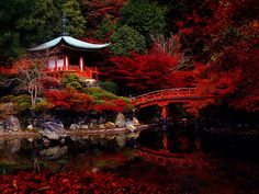 Daigo-ji Temple, Kyoto. Serenity.