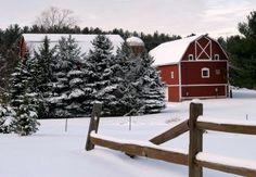 Winter farm pics