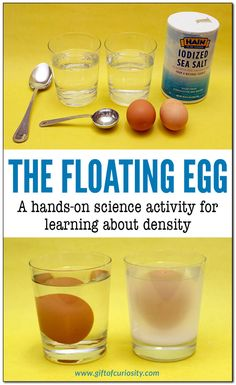 The Floating Egg: A Hands-On Science Activity For Learning About Density. Kids Will Learn That An Egg Sinks In Fresh Water But Floats In Salt Water. This Activity Is Part Of The Density Stem Pack. Endowment Of Curiosity Preschool Science Activities, Farm Activities, Science Activities For Kids, Stem Science, Easy Science, Science Fair Projects, Teaching Science, Science Education, Summer Science