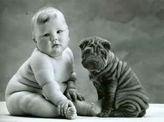 cute puppies and baby - Google Search  I saw this and couldn't resist