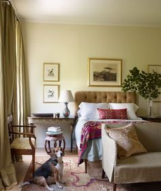 At Julia Reed and John Pearce's Greek Revival home in New Orleans, the couple's beagle, Henry, makes himself at home in a guest bedroom. Tour the entire home. White Paint Colors, Paint Colors For Home, New Orleans Homes, Ideas Hogar, Relax, Layout, Beautiful Bedrooms, Amazing Bedrooms, Elle Decor