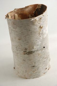 """Natural Birch Bark Tubes (6-10"""" tall)    $14.29  (use for table numbers/ carve into the bark)"""