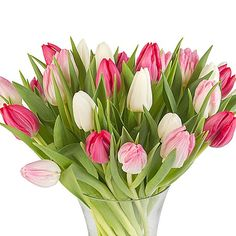 Pink Mix Tulips with Vase http://www.serenataflowers.com/en/uk/flowers/next-day-delivery/product/108057/pink-mix-tulips-with-vase?refPageID=5045&refDivID=6|center|product-set|category-list|4x5|1+++3|1|product|108057|image|140x140|standing|4|1|standard|