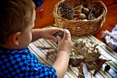 Playing with Clay: Reggio Emilia and Occupational Therapy for Preschoolers
