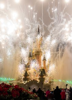 Photo Tips for Disney World   Struggling with your point & shoot camera and need some tips for taking better photos? Then this is a post you need to read!