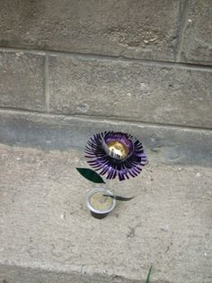 nespresso flowerpot