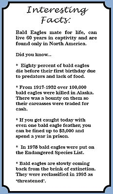 essay about eagle bird What does it mean when you see an eagle soaring overhead how can you harness the power of this magnificent bird in your everyday life read to find out.