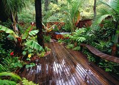 34 pool landscaping ideas tropical small backyards - Savvy Ways About Things Can Teach Us Small Tropical Gardens, Tropical Backyard, Tropical Landscaping, Landscaping With Rocks, Backyard Landscaping, Landscaping Ideas, Tropical Plants, Bali Garden, Balinese Garden