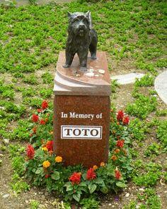 Toto RIP