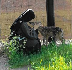 Franciscan Charism of Capuchin Sisters of Nazareth, Francisan women religious, apostolic contemplative nuns
