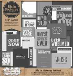 Potty Mouth Life in Pictures Cards