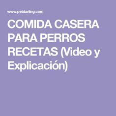COMIDA CASERA PARA PERROS RECETAS (Video y Explicación)