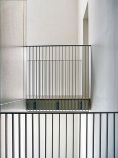 Tadao Ando  Photo by Maria Luisa