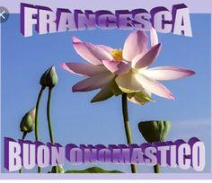 Auguri a Francesca