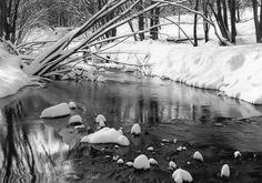 Cool and calm winter in Pheasant Branch Conservancy.