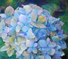 Blue Hydrangea - Watercolour. . .no artist name displayed. c2013