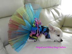 Dog Harness Dress TuTu Custom Dog Clothes Chihuahua Poodle Yorkie All Tiny Dogs. $32.00, via Etsy.