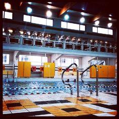 92 Meilleures Images Du Tableau Piscine Olympic Pools Buildings