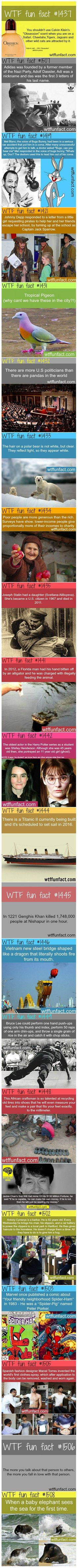 """Here are some fun and interesting facts you will not believe are true. Sorry for  the """"wtf"""" :/"""