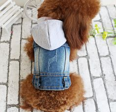 OSPet Pet Vests Dog Denim Hoodies Puppy Jacket for Small Dogs * More info could be found at the image url.