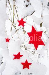 Weiße Weihnachten, rote Sterne im Schnee, Weihnachtsgrüße