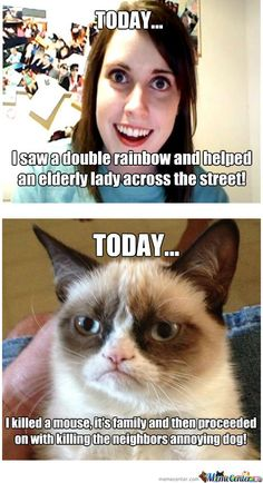 Girl On Fire Grumpy Cat | Grumpy Cat And Annoying Girl - Meme Center