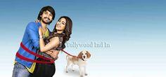 Kittu Unnadu Jagratha Movie Release Date Posters Photos Kittu Unnadu Jagratha Movie Release Date Posters Photos   #anu emmanuel #kittu unnadu jagratha #latest movie updates #raj tarun #Telugu Movie