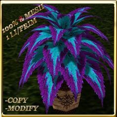 Second Life Marketplace - LW_ Potted Coleus Plant Mesh - Genus 4 - Purple Blue Beautiful Flowers Garden, Flowers Nature, Exotic Flowers, Pretty Flowers, Shade Garden Plants, Purple Plants, Elephant Ear Plant, Gothic Garden, Inside Plants